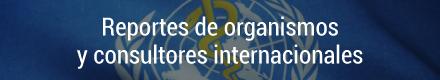 Reportes de organismos y consultores internacionales